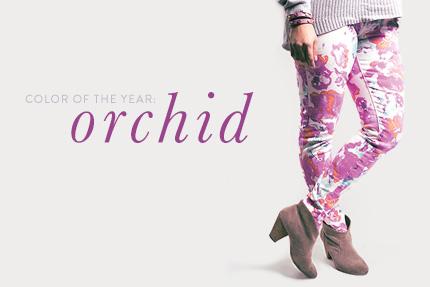 merch_med_orchid